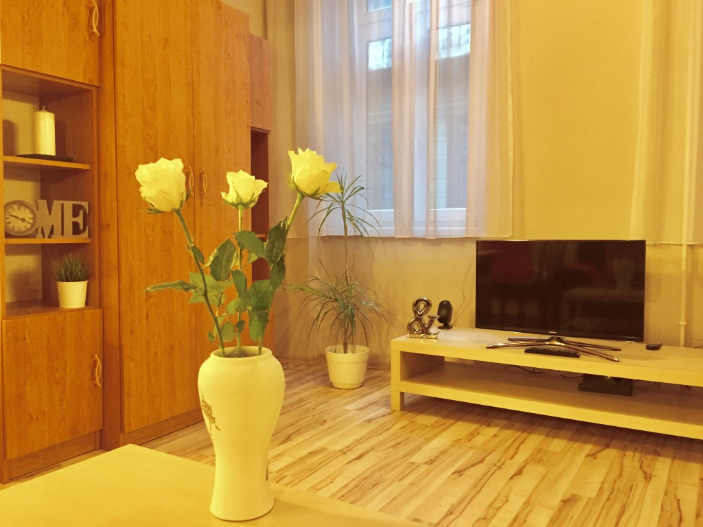 http://budapest-central-apartments.com/wp-content/uploads/2015/03/kiraly-1-00004-1024x768.jpg